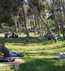 Bakan Eroğlu'ndan piknikçilere uyarı