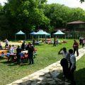 Bahar Şenliği & Piknik